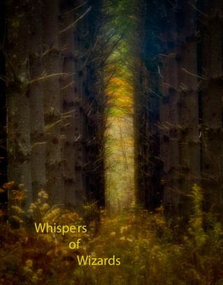 Whispers of Wizards